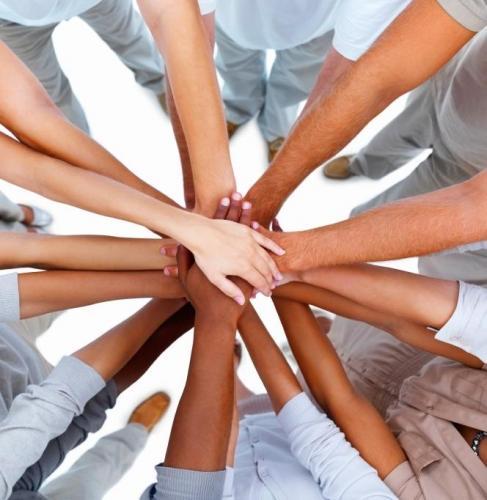 Les comissions fan una crida per incorporar nous membres