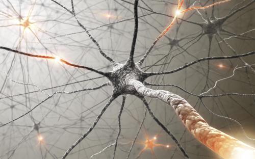Voleu sumar-vos a la Comissió de Neurologia del CFC?